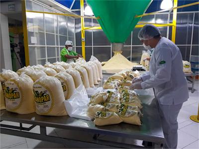 Granopar, Procesadora de Maiz